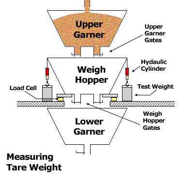 A graphic describing a scale going through its normal weighing process